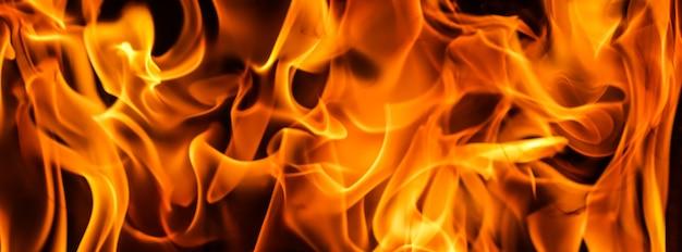 Feuerflammen auf schwarzem hintergrund das geheimnis des feuers