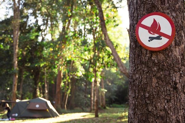 Feuergefahrzeichen auf dem baum. ikone des brandverbots im wald. es ist verboten, ein feuer auf einem campingzelt in einem naturpark anzuzünden. hören sie auf, naturressourcen zu verbrennen. entwaldung verhindern