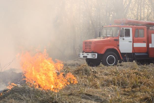 Feuerwehrauto in der nähe von brennendem gras auf dem land ist gekommen, um ein wildes feuer zu löschen