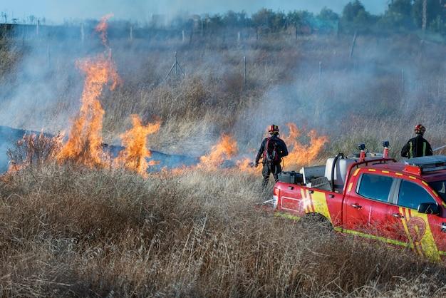 Feuerwehrleute, die versuchen, einen waldbrand zu löschen