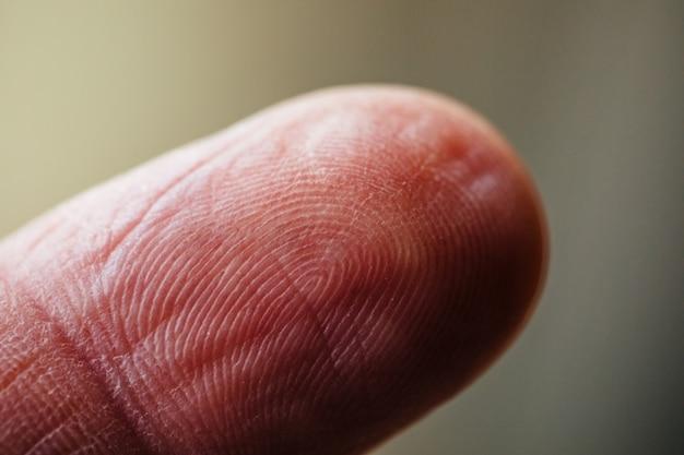 Fingerabdruckdetail