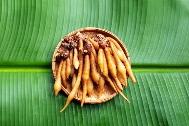 Fingerwurzel auf bananenblatt