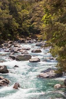 Fiordland national park stürmischer fluss im grünen
