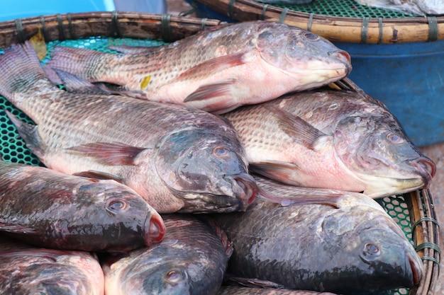 Fisch auf dem markt