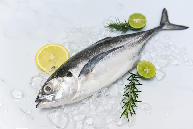 Fisch auf eis zum kochen von speisen im restaurant, frischer fisch roher torpedo-scad makrele