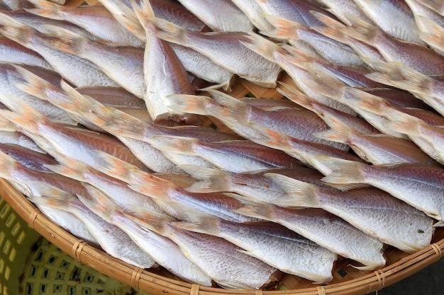Fisch trocknen