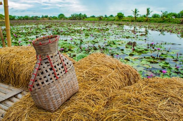 Fischengatter, bambuskorb setzte den fisch auf reisstrohbalkon mit einem lotus-teich.