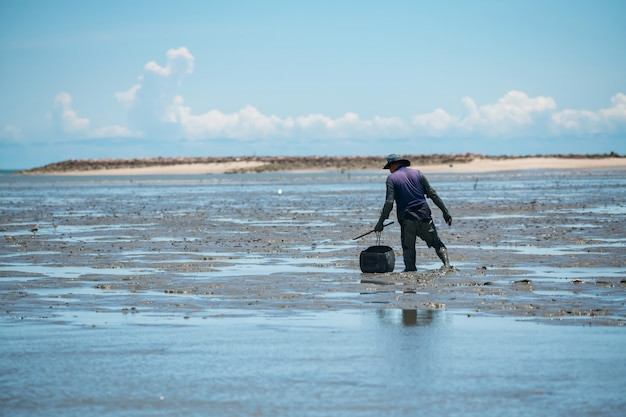 Fischer oder einheimische, die bei ebbe krabben fangen. er trägt einen container, um krabben und muscheln in laem . zu halten
