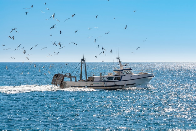 Fischerboot segeln mit möwen, die darüber fliegen