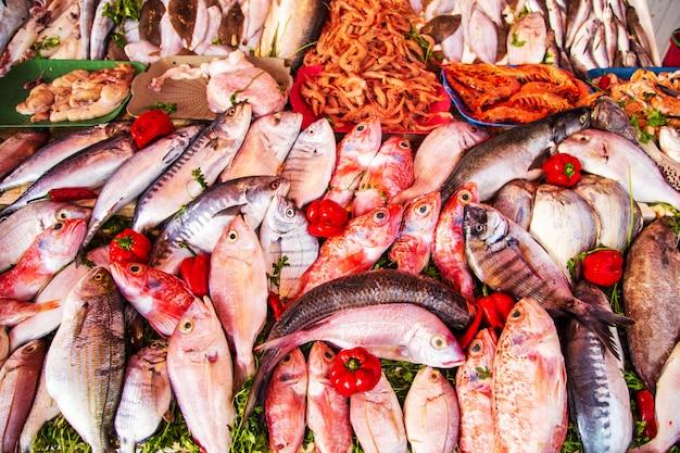 Fischmarkt in essaouira. frisches und gesundes essen.