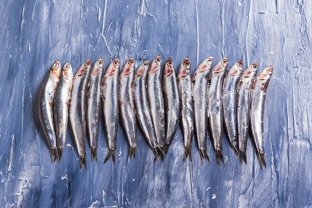 Fischmuster. frische sardellen auf blau