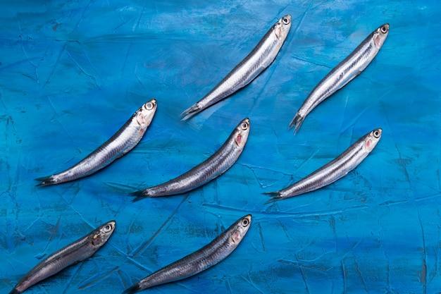 Fischmuster sardellen schwimmen auf einem blauen seehintergrund.