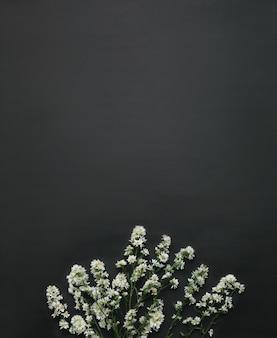 Flach auf etwas frischem gänseblümchenhintergrund legen