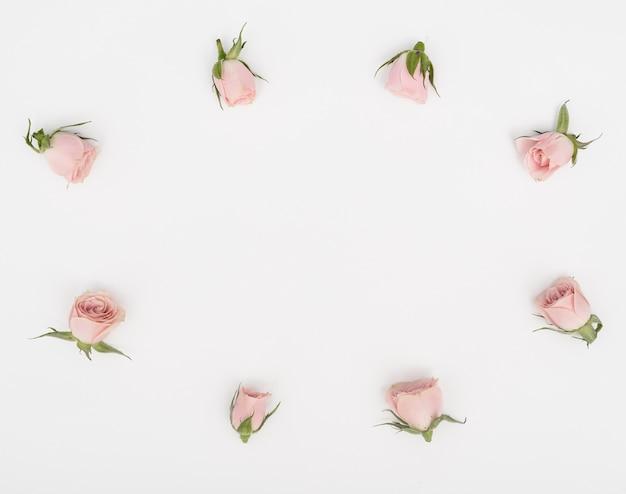 Flach gelagerter rosenknospenrahmen und kopierraumhintergrund