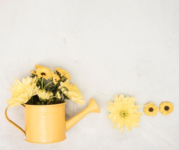 Flach gelegte gießkanne mit gelben blüten