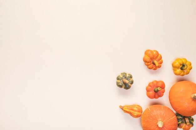 Flach legen lebensmittelrahmen mit kürbissen