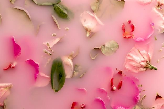 Flach legen rosa blüten in rosa gefärbtem wasser