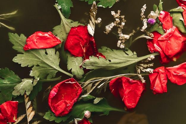 Flach legen rote blütenblätter in schwarzwasser