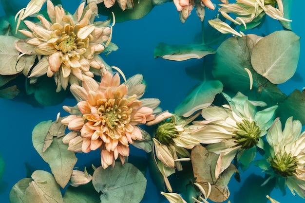 Flach legen sie zarte blüten in blaues wasser