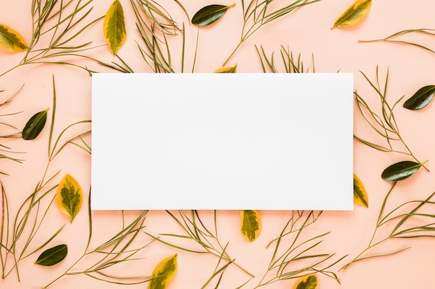 Flache lage der papierkartenschablone mit blättern