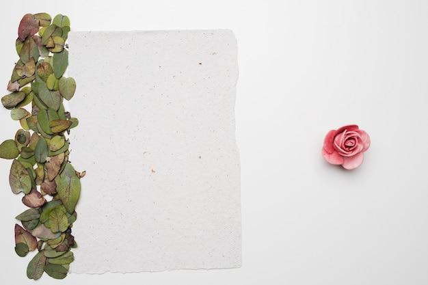 Flache lage der papierschablone mit naturkonzept
