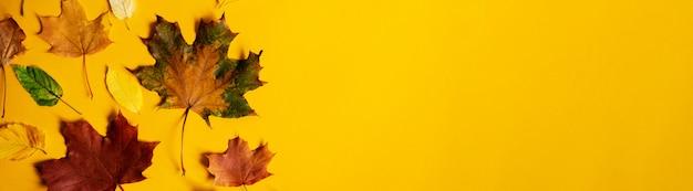 Flache lage des bunten herbstlaubs der natur auf gelber hintergrundfahne