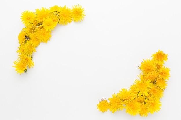 Flache lage des gelben blumenrahmens mit kopierraum