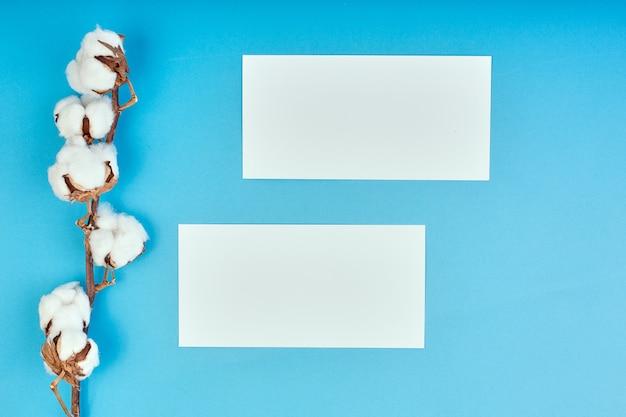 Flache lage des hellblauen hintergrunds mit zweig der baumwollblume. baumwolle und leeres papier. flache lage, kopierraum.
