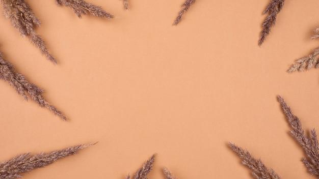 Flache lage des monochromatischen rahmens aus getrocknetem lavendel