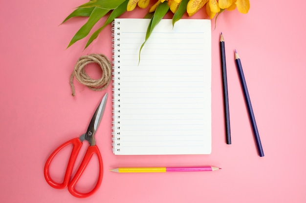 Flache lage des offenen notizbuchpapiers auf rosa.
