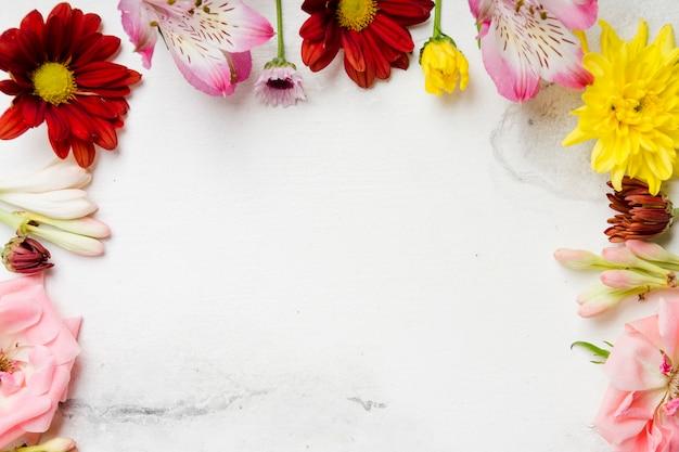Flache lage von bunten frühlingsblumen