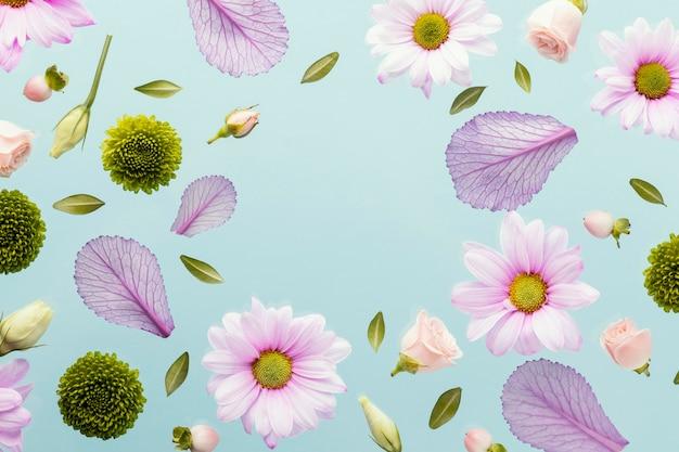 Flache lage von frühlingsgänseblümchen und blättern mit kopierraum