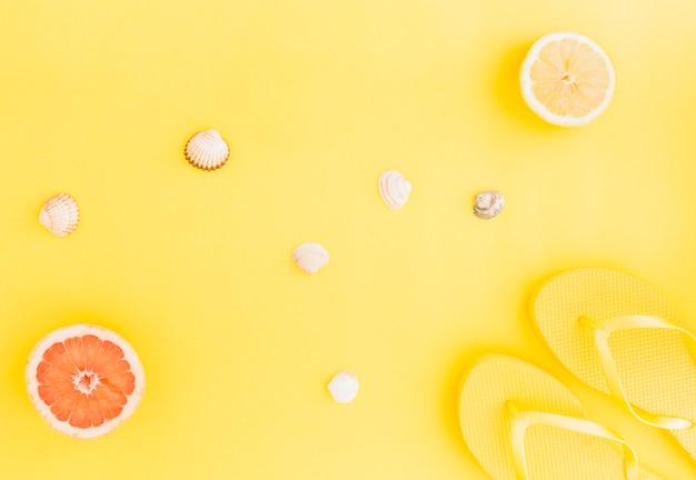 Flache lage von muscheln und früchten