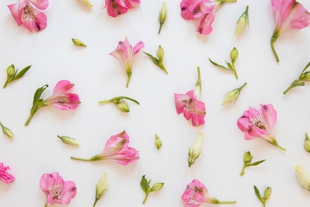 Flache lage von wunderschönen blumenarrangements