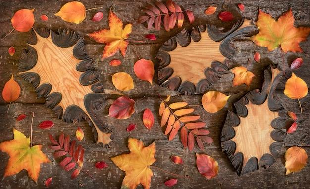Flache laienzusammensetzung von bunten natürlichen blättern und geschnitzten holzblättern auf baumrindenhintergrund.