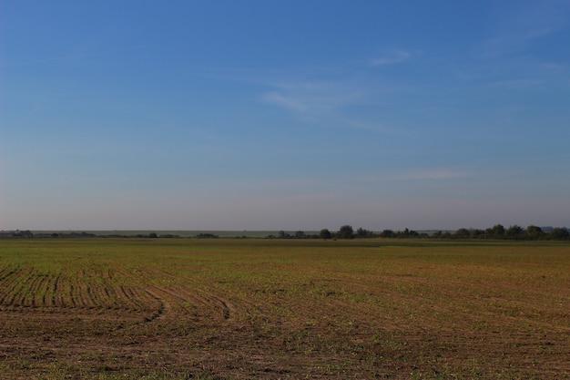 Flache landschaft