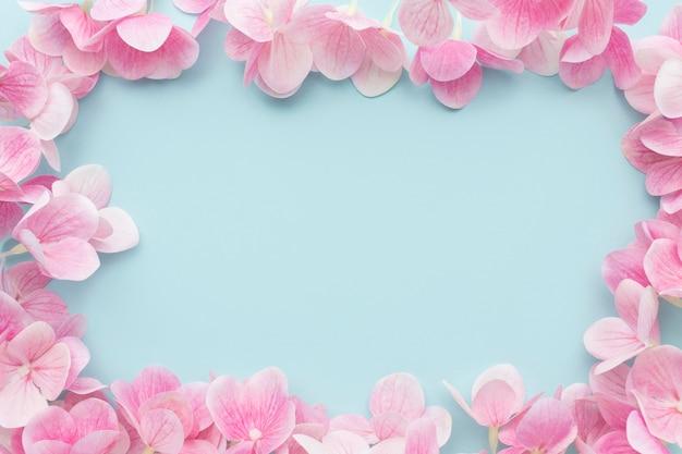 Flache legen rosa hortensie blumen rahmen
