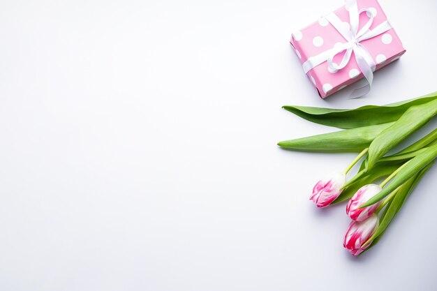 Flache legen tulpen und geschenkbox auf weißem hintergrund