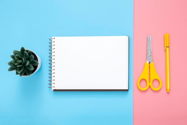 Flache schreibwarenanordnung auf zweifarbigem hintergrund