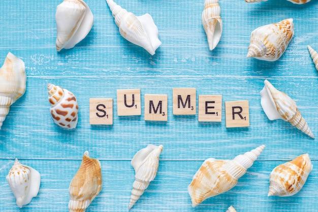 Flache sommerkomposition mit muscheln