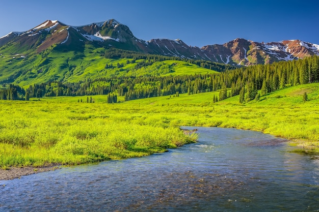 Flacher bach inmitten von alpenbäumen auf sanften hügeln und bergen