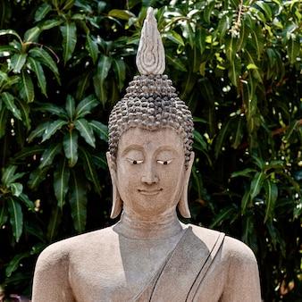 Flacher fokusschuss einer alten buddha-statue