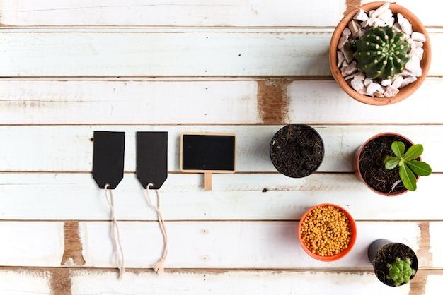 Flacher gartenschreibtisch mit kaktuspflanzen im topf und im schwarzen papieretikett auf weinlesetisch, draufsicht