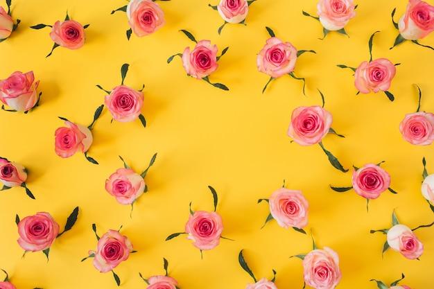 Flacher rahmenrahmen mit leerem kopierraummodell, das von rosa rosenblütenknospen auf gelbem hintergrund gemacht wird.