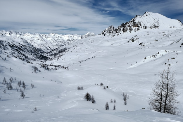 Flacher winkelschuss eines bewaldeten berges, der mit schnee und pfaden unter einem blauen himmel bedeckt wird
