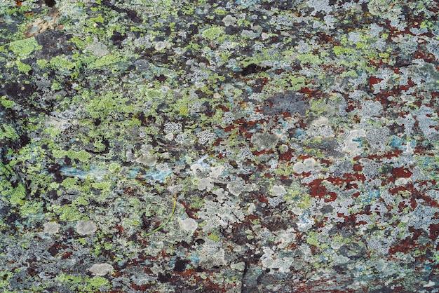 Fläche des mehrfarbigen flusssteins im makro. schöner felsenoberflächenabschluß oben. bunter strukturierter stein. erstaunlich detailliert von highlands boulder mit moosen und flechten. natürliche beschaffenheit des berges.