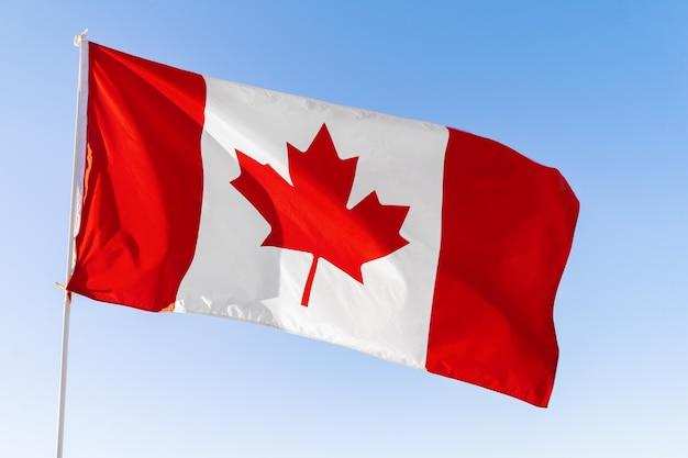 Flagge von kanada, die gegen blauen himmel weht