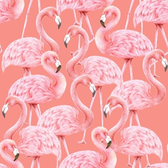 Flamingos nahtloses muster