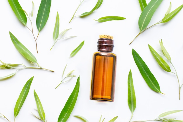 Flasche des ätherischen eukalyptusöls mit blättern auf weiß.