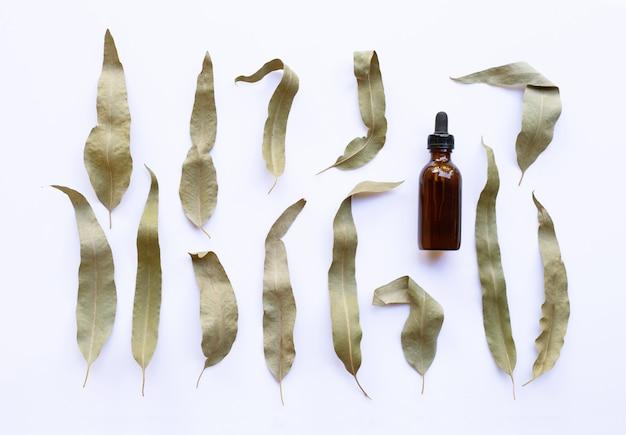 Flasche des ätherischen öls des eukalyptus mit trockenen blättern auf weiß